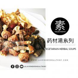 VEGETARIAN HERBAL SOUP 素药材湯